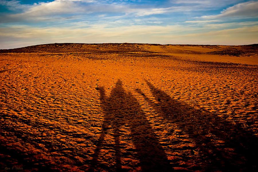 Shadows On The Sahara Photograph