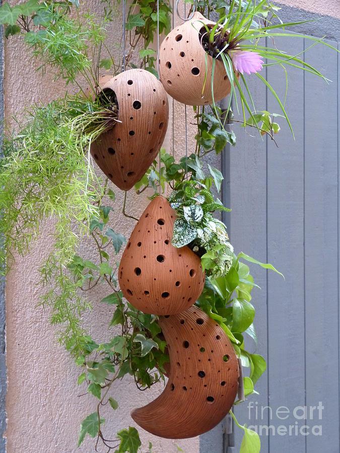 Shaped Flower Pots Photograph