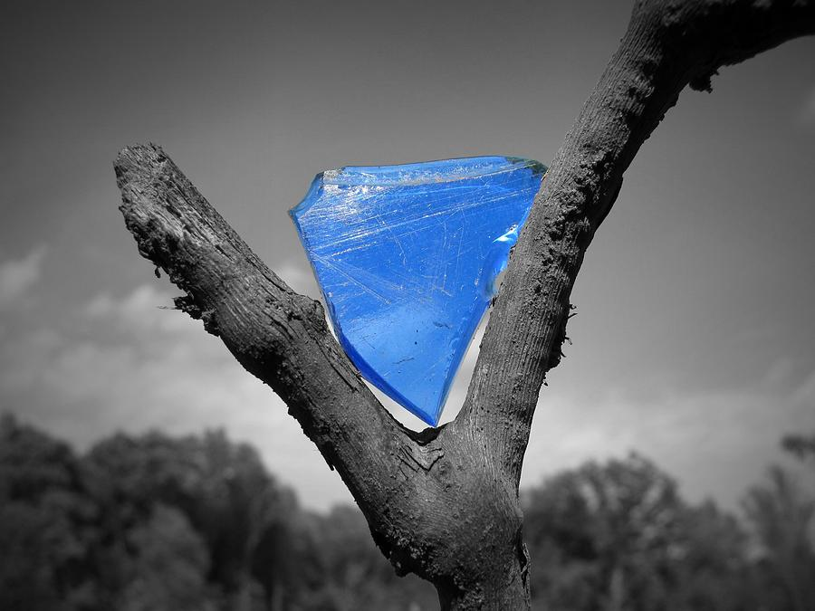 Shard Of Blue Glass Photograph