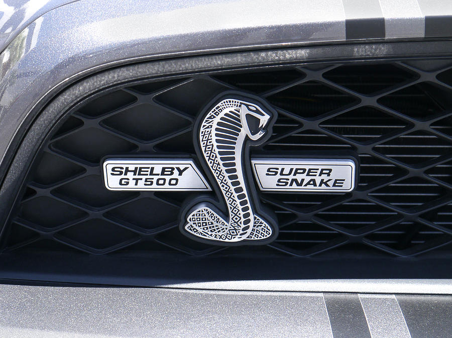 Shelby Gt 500 Super Snake Photograph  - Shelby Gt 500 Super Snake Fine Art Print