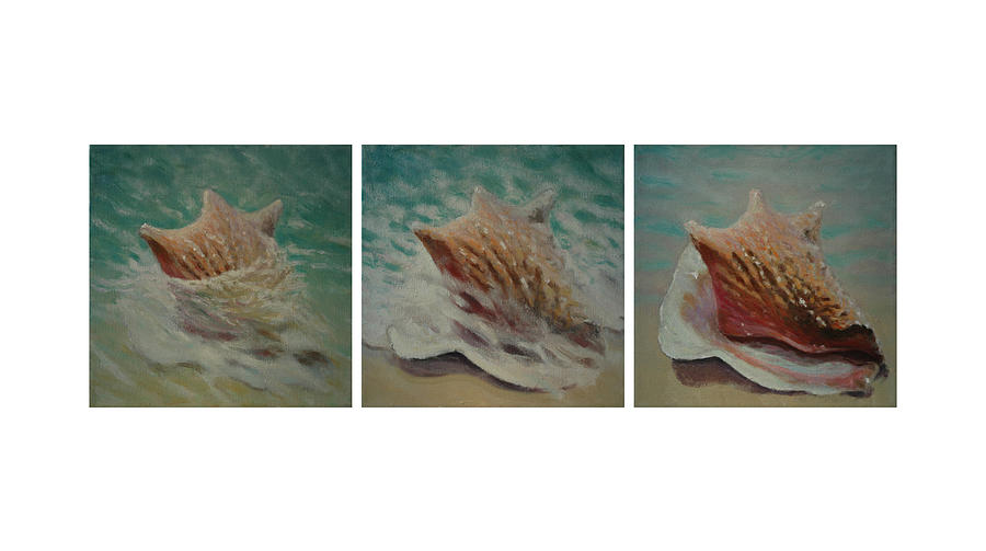 Shells Triptych Painting