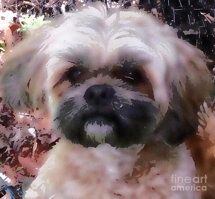 Shih Tzu Watercolor Digital Art