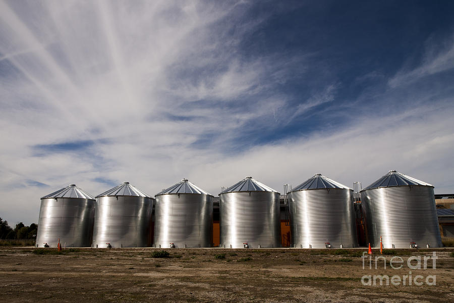 Shiny Silos Photograph
