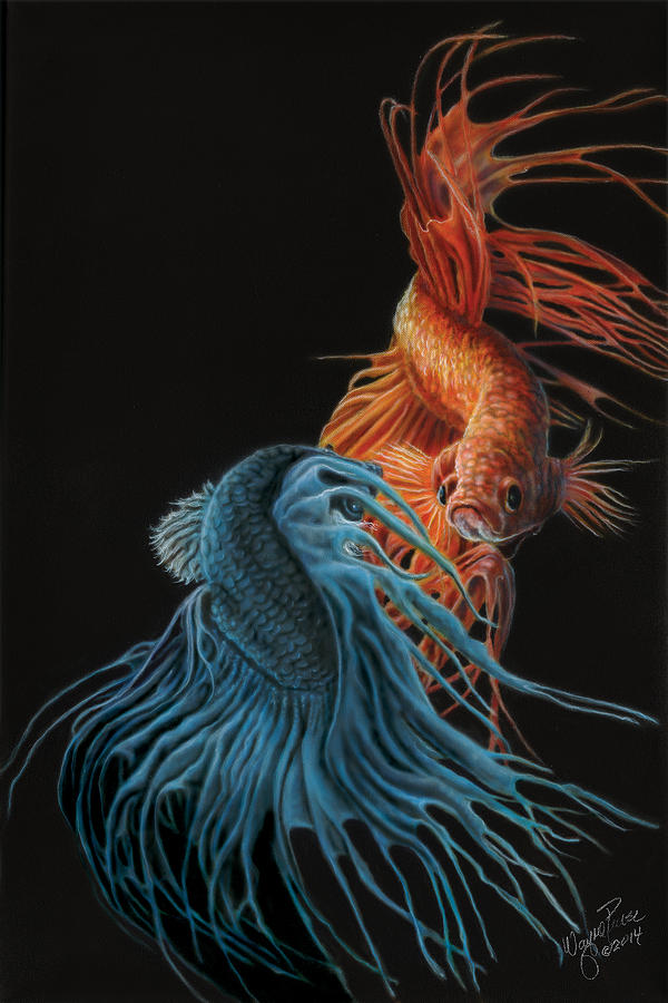 Siamese Fighting Fish Two Painting By Wayne Pruse