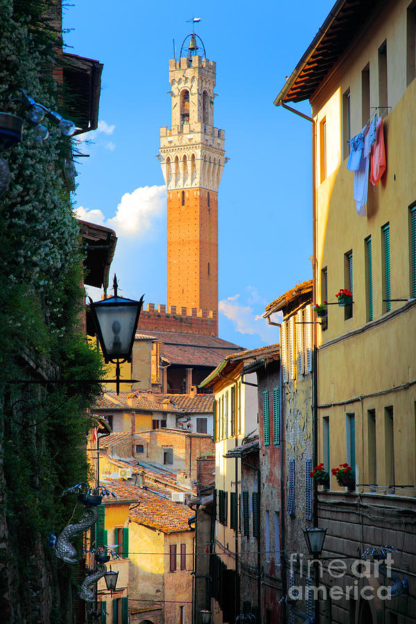 Siena Streets Photograph