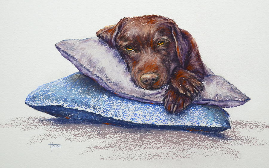 Dogs Painting - Siesta by Cynthia House