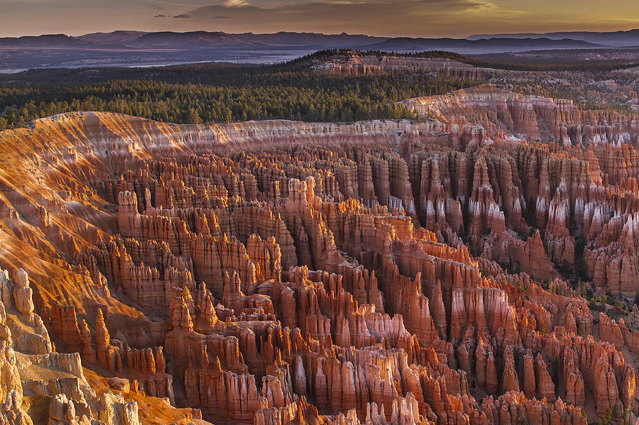 Bryce Photograph - Silent City - Bryce Canyon by Eduard Moldoveanu