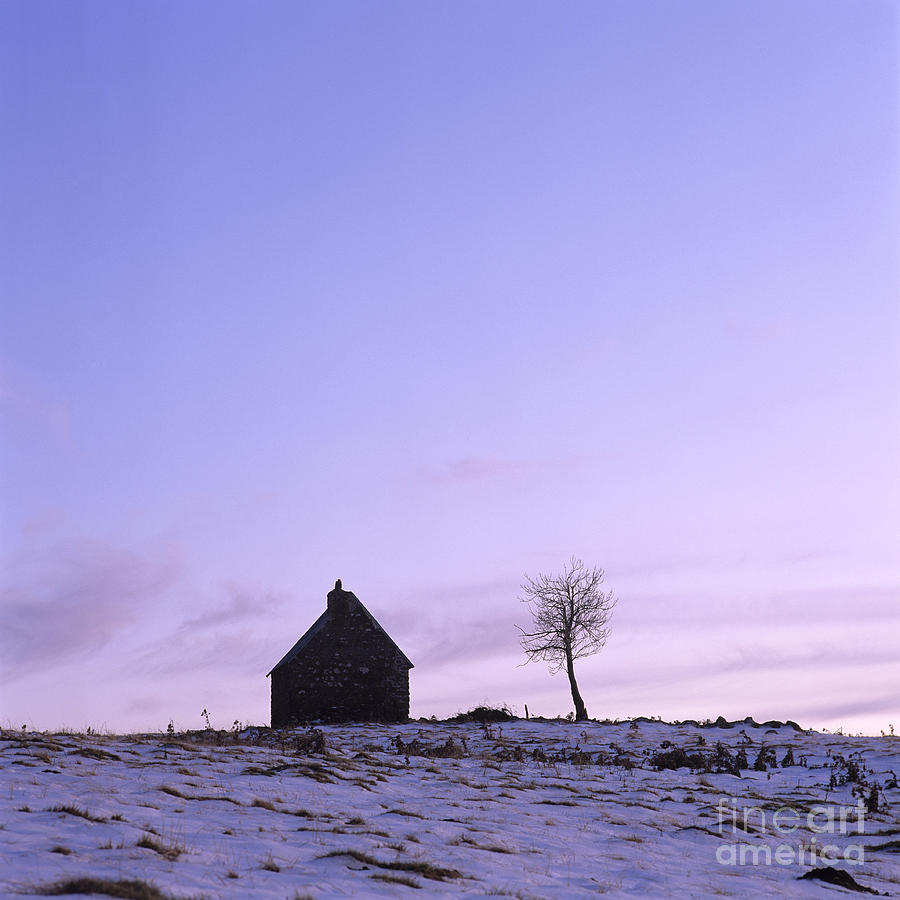 Silhouette Of A Farm And A Tree. Cezallier. Auvergne. France Photograph