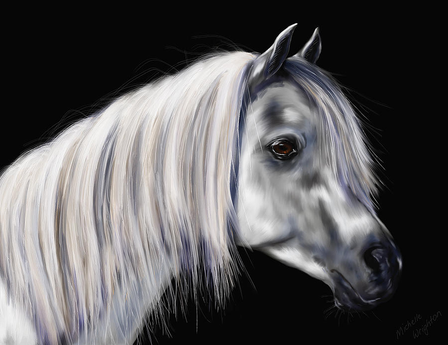 Silver Grey Arab Mare Painting  - Silver Grey Arab Mare Fine Art Print