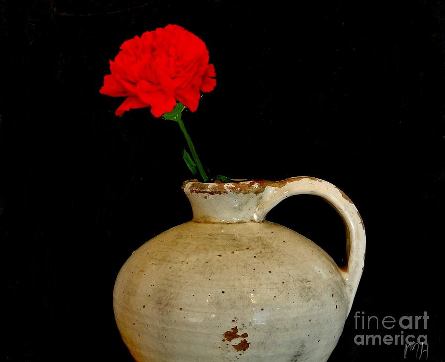 Simple Carnation In Pottery Photograph