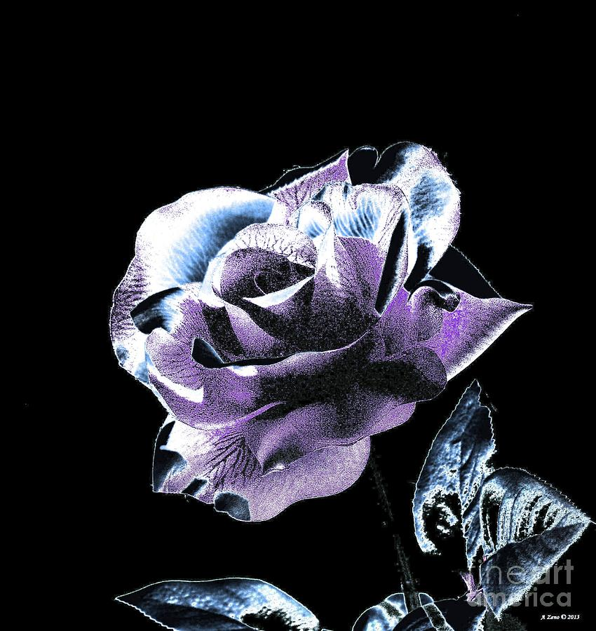 Single Rose V Photograph  - Single Rose V Fine Art Print