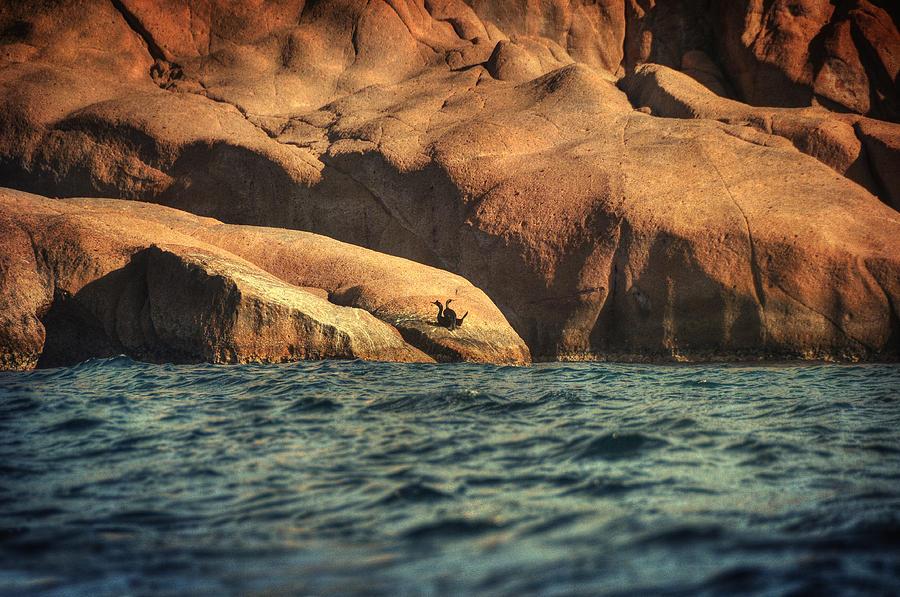 Siren Rocks II Photograph
