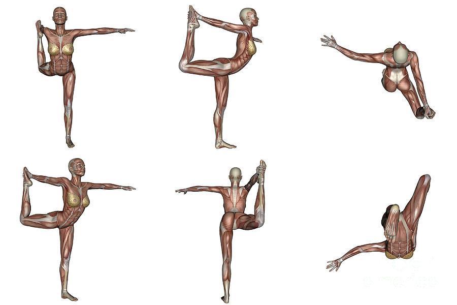 Six Different Views Of Dancer Yoga Pose Digital Art