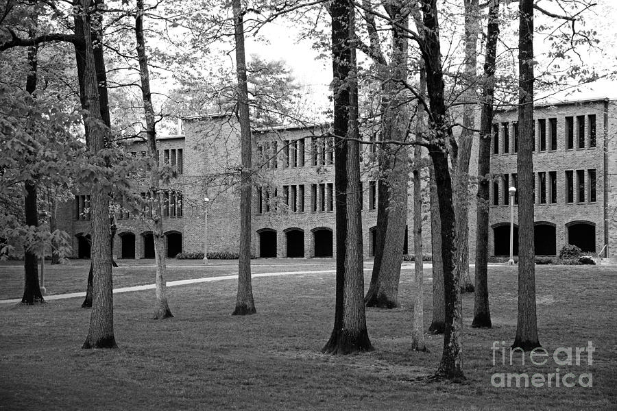 New York Photograph - Skidmore College Dana Science Center by University Icons