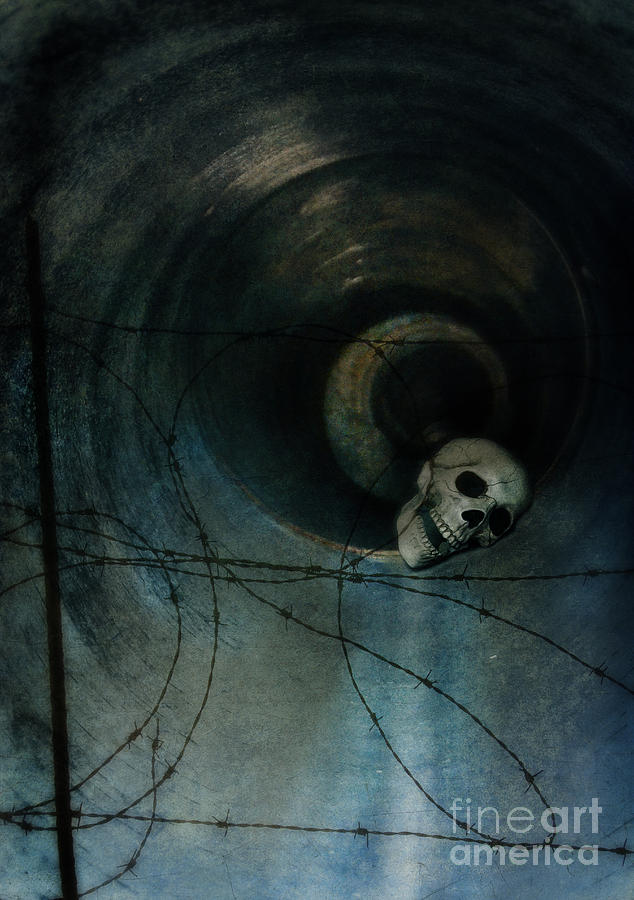 Skull In Drainpipe Photograph