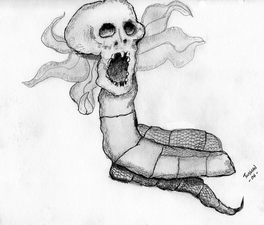 Human Skull Drawing - Skull Snake by Dan Twyman