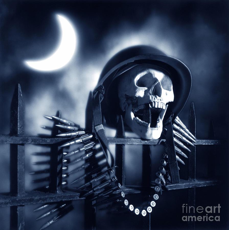 Skull Photograph - Skull by Tony Cordoza