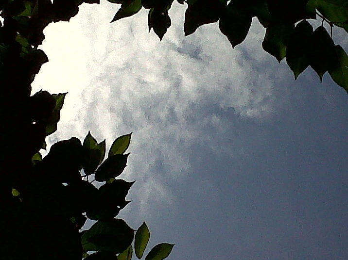 Sky Is The Limit Photograph