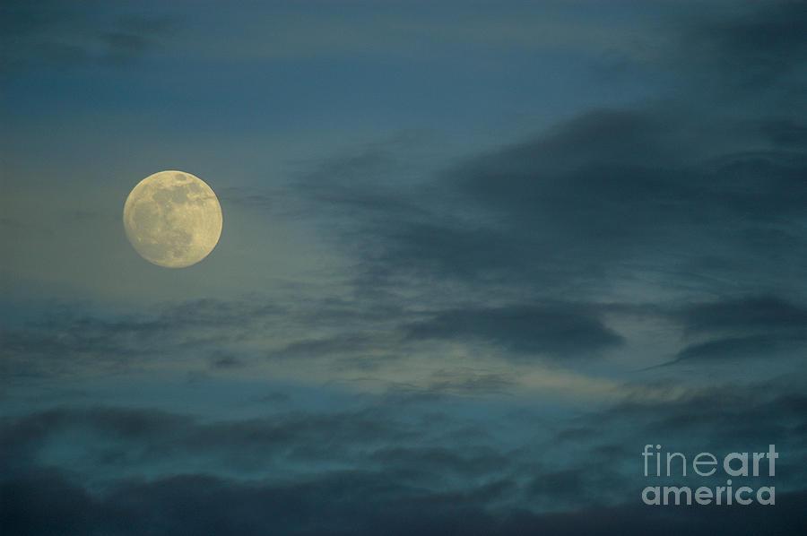 Sky Moon Photograph