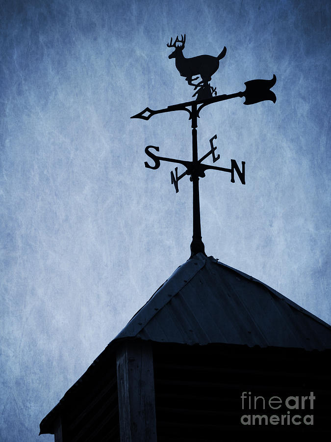 Skyfall Deer Weathervane  Photograph