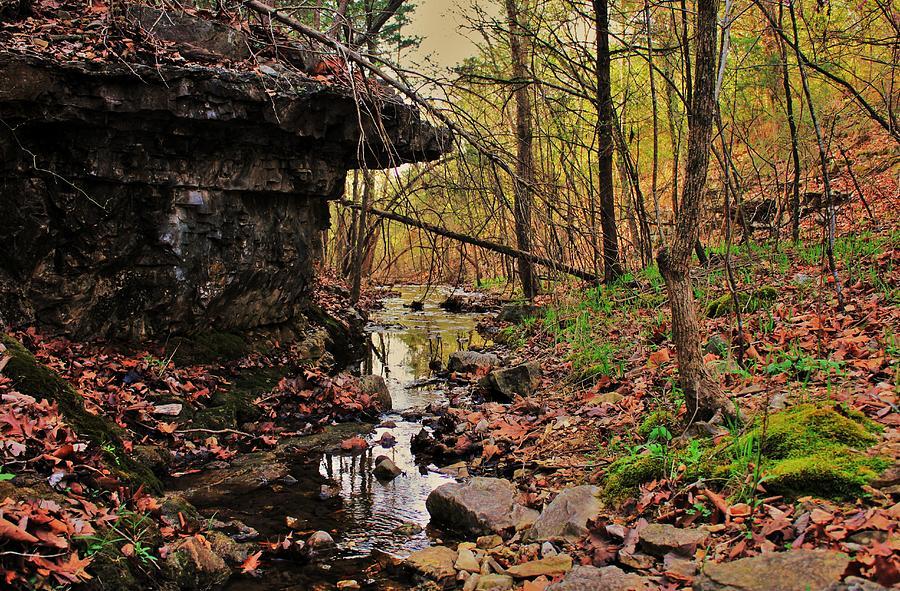 Slate Bottom Creek Photograph