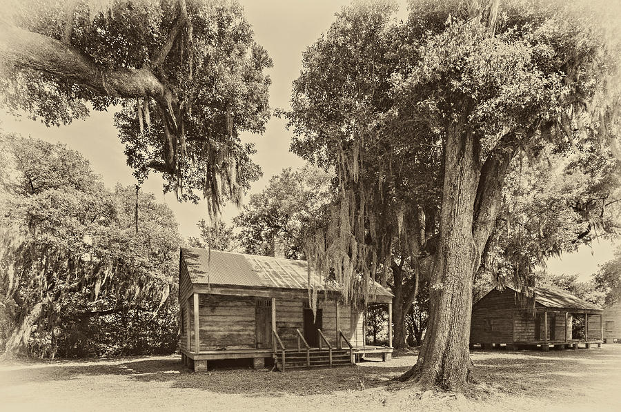 Slave Quarters Sepia Photograph