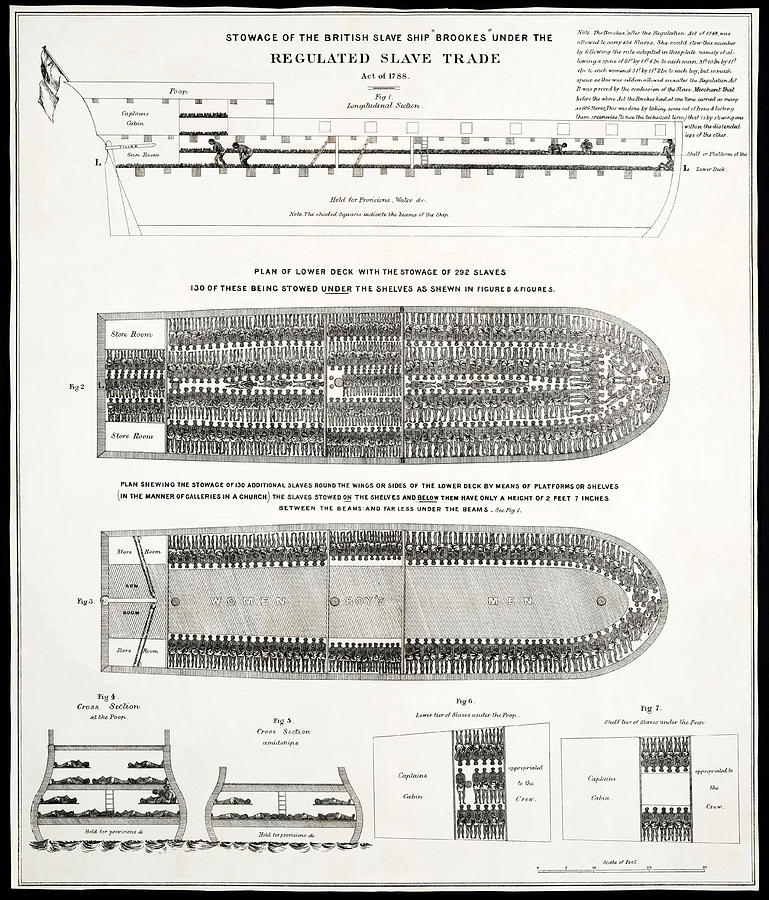 Slave Ship Middle Passage Stowage Diagram  1788 Photograph