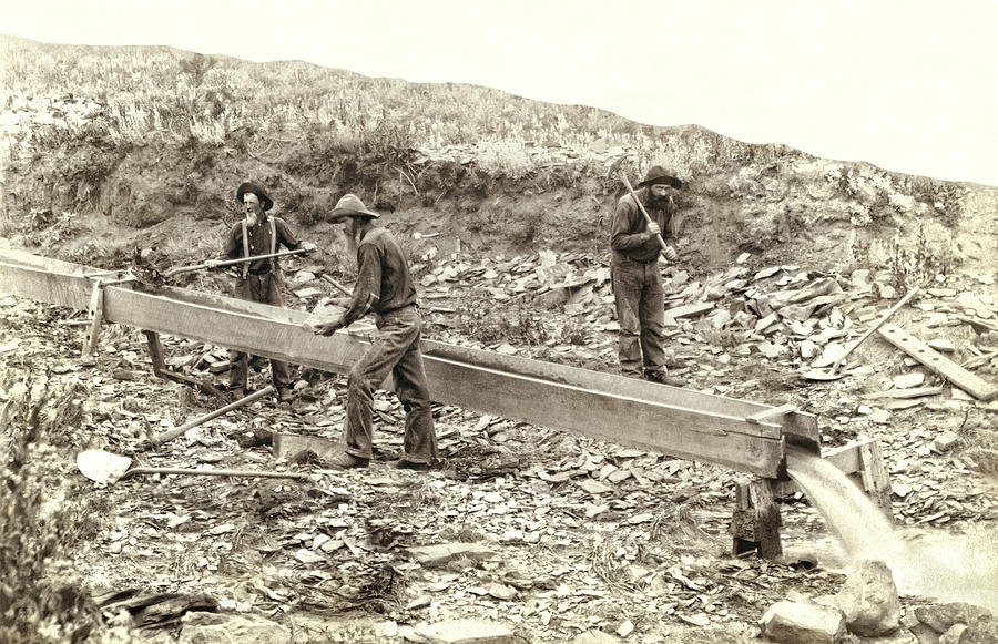 Sluice Box Placer Gold Mining C. 1889 Photograph