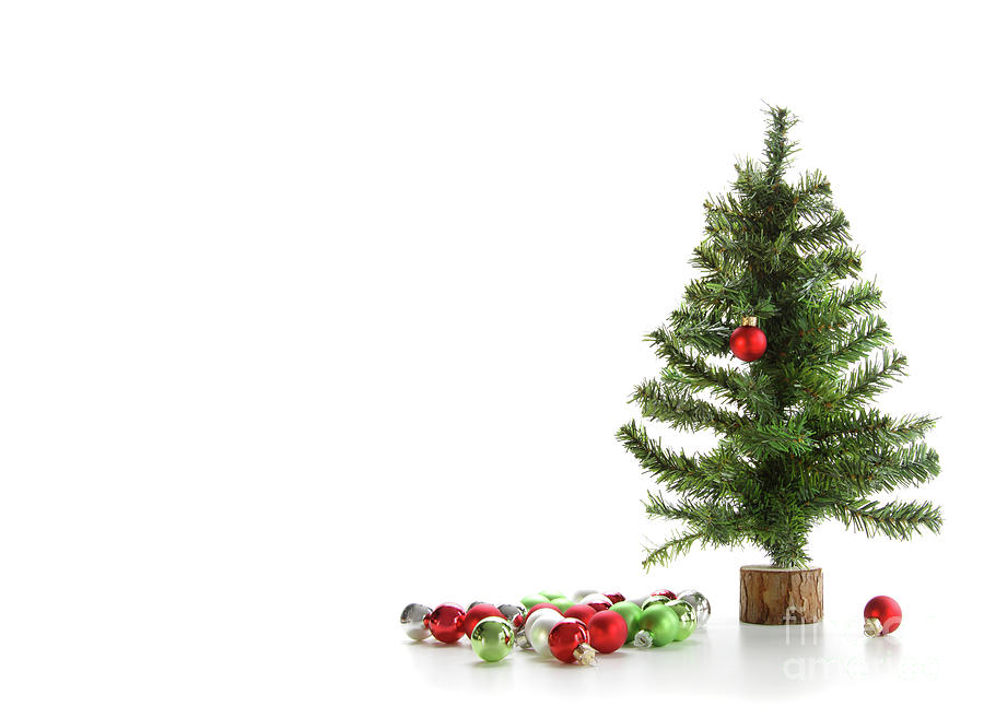 Artificial Photograph - Small Artifical Tree With Ornaments On White by Sandra Cunningham