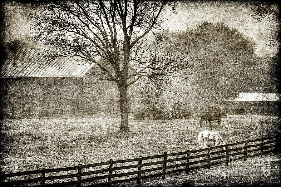 Small Farm Photograph - Small Farm In West Virginia by Dan Friend