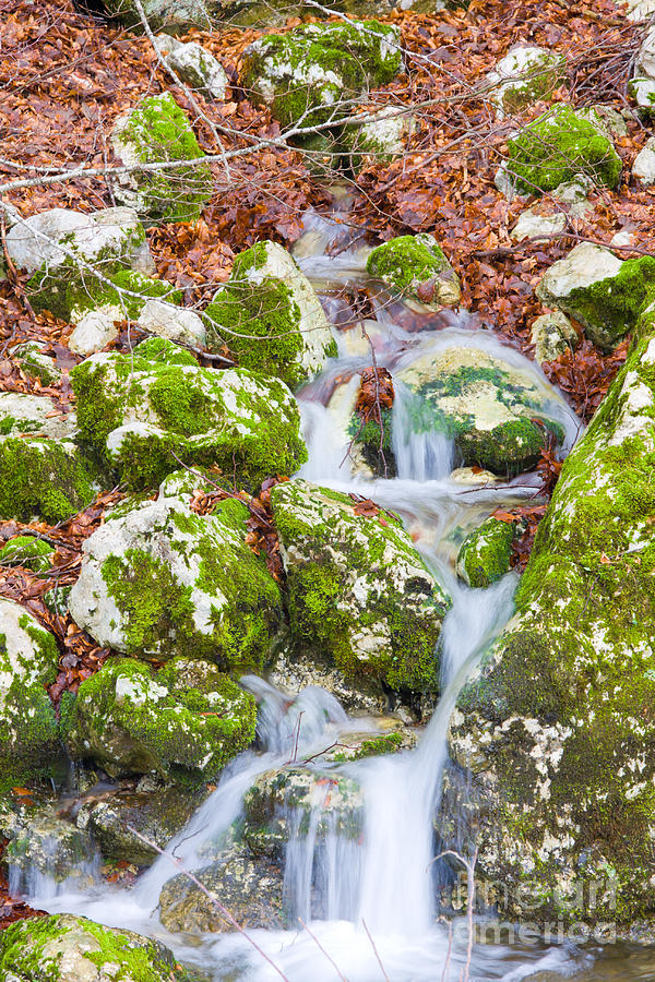 Small Waterfall Photograph  - Small Waterfall Fine Art Print