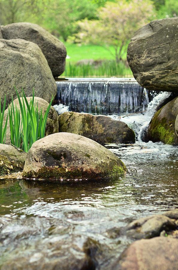 Waterfall Photograph - Small Waterfall by Gynt
