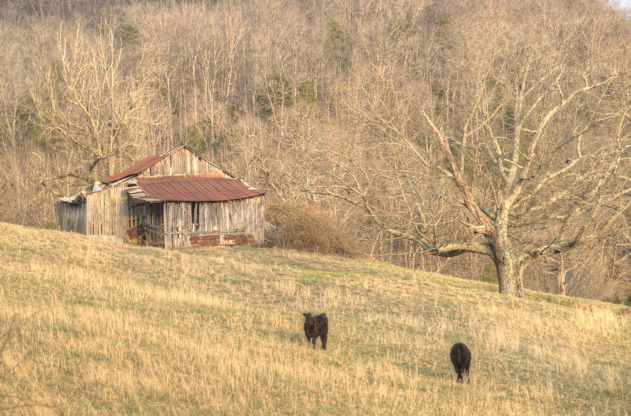 Smoky Mountain Barn 8 Photograph