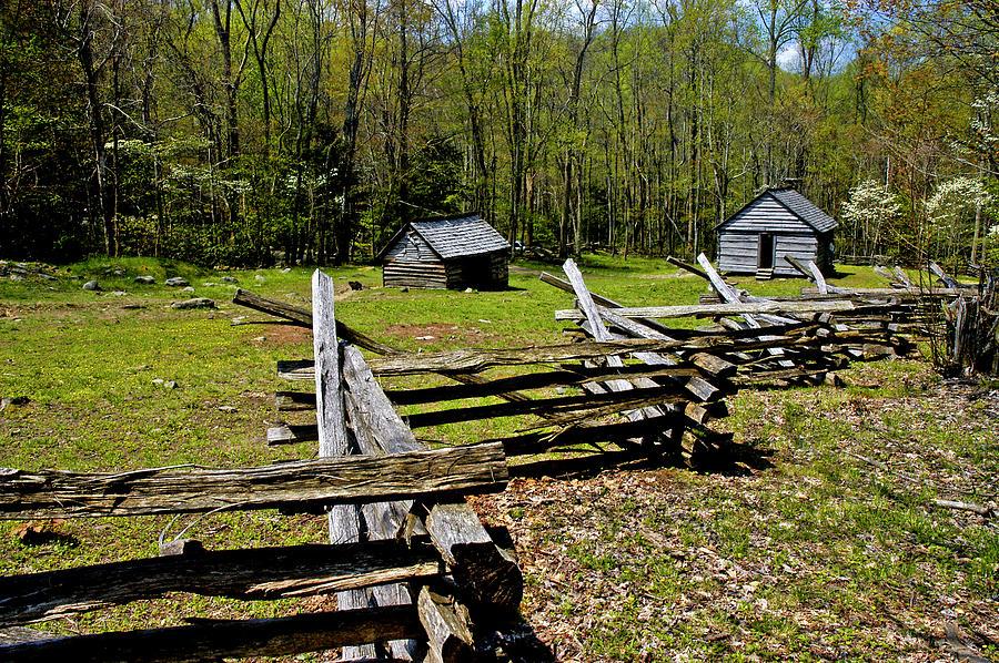 Smoky Mountain Cabins Photograph