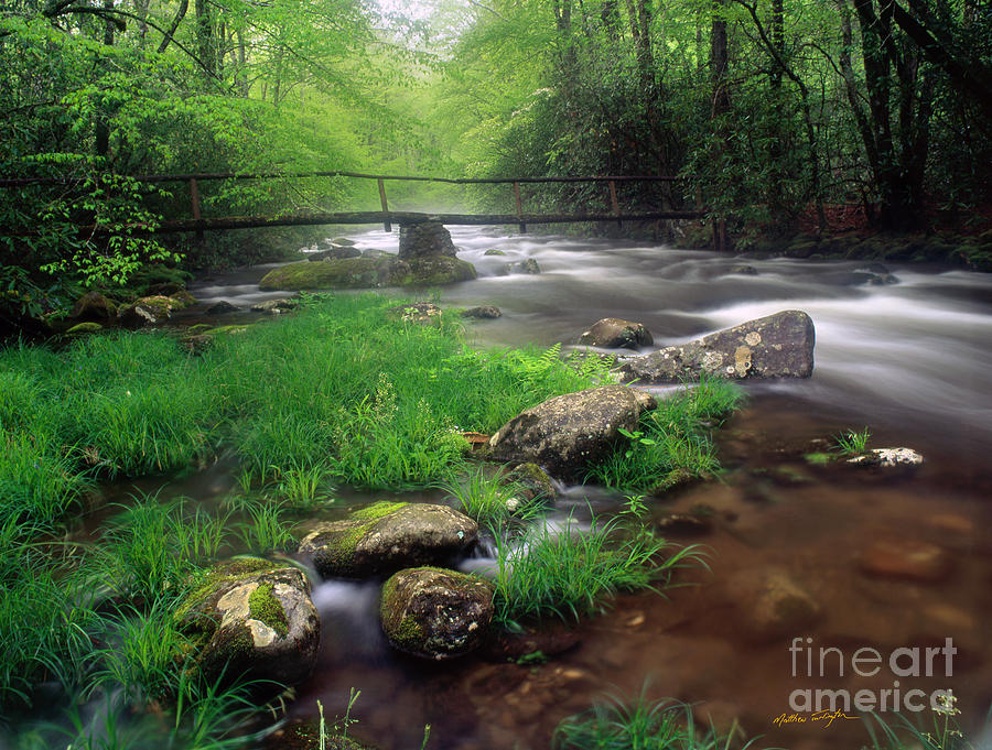 Smoky Mountain Stream 2009 Photograph  - Smoky Mountain Stream 2009 Fine Art Print