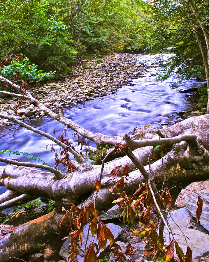 Smoky Mountains Photograph - Smoky Mountain Stream Two by Frozen in Time Fine Art Photography