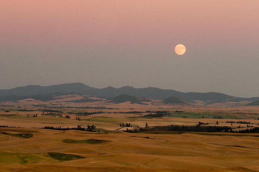 Smoky Palouse Photograph