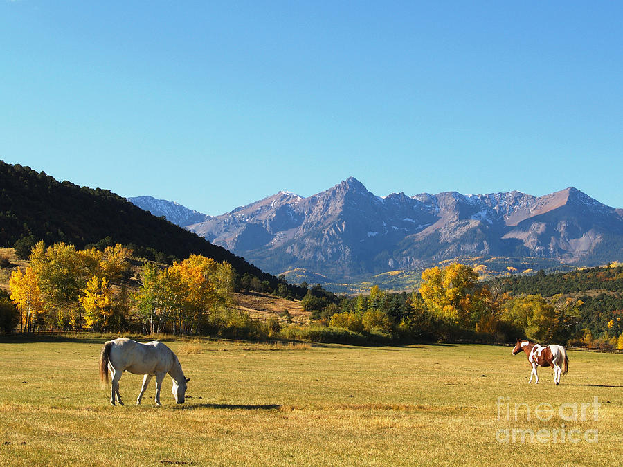 Sneffels Range In The San Juan Mountains Of South West Colorado Photograph