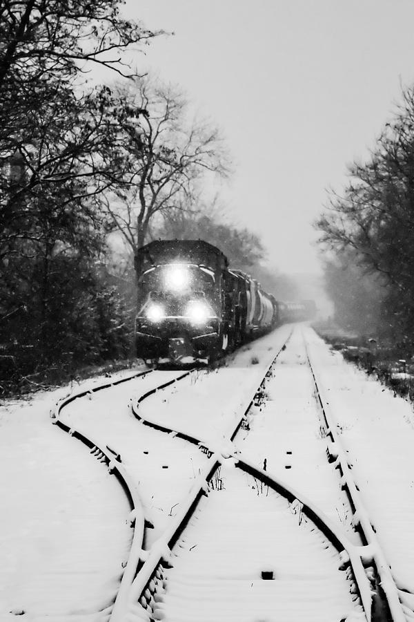 Snow Bound Photograph