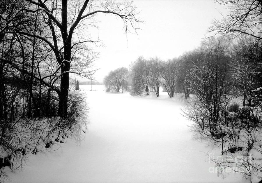Snow Covered Herrick Lake 1981 Photograph  - Snow Covered Herrick Lake 1981 Fine Art Print