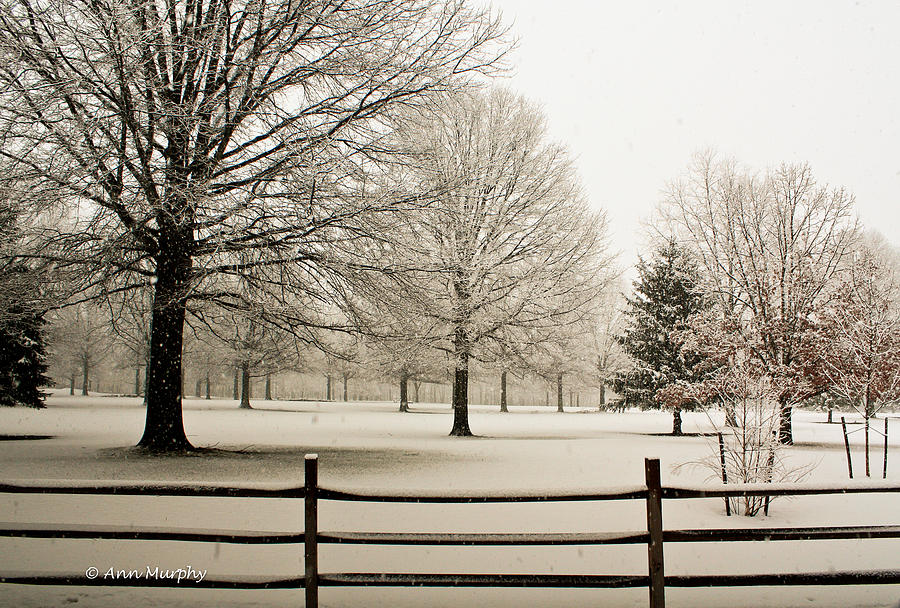 Snow-covered Landscape Photograph  - Snow-covered Landscape Fine Art Print