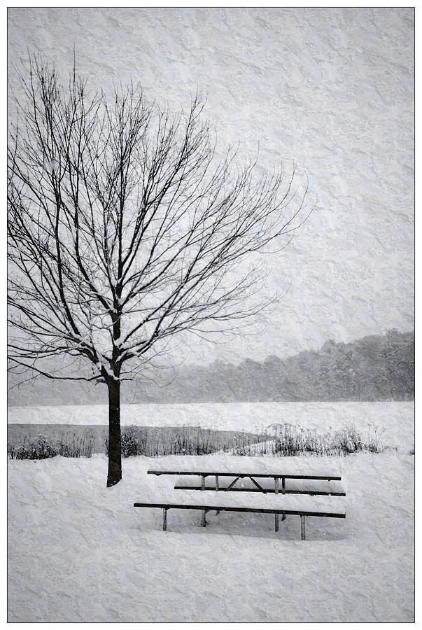 Snow Covered Picnic Table Photograph