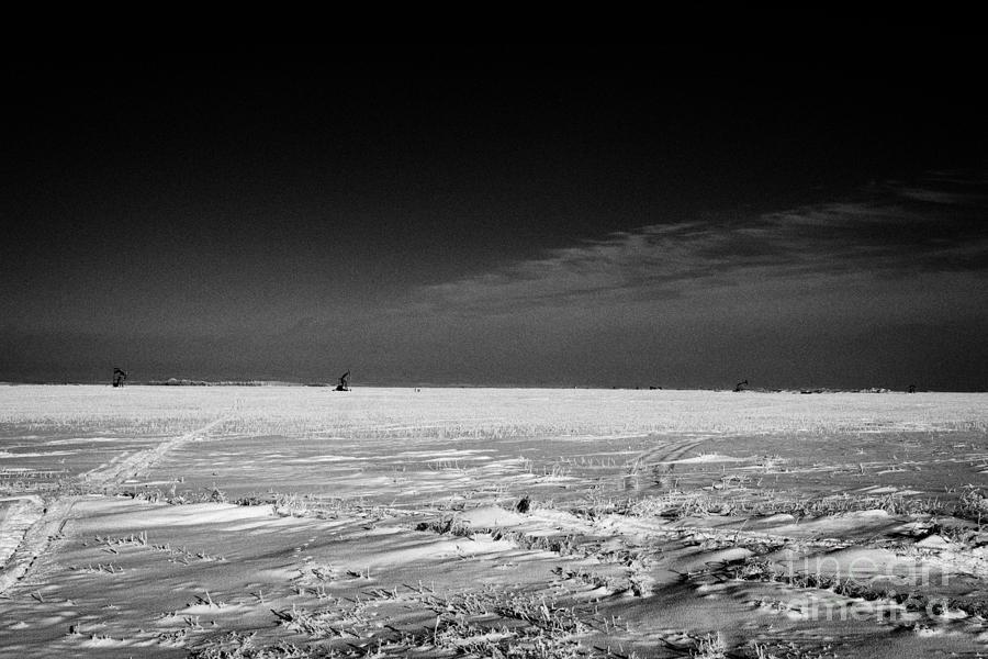 snow covered prairie agricultural farming land with pumpjacks oilfield winter Forget Saskatchewan Ca Photograph