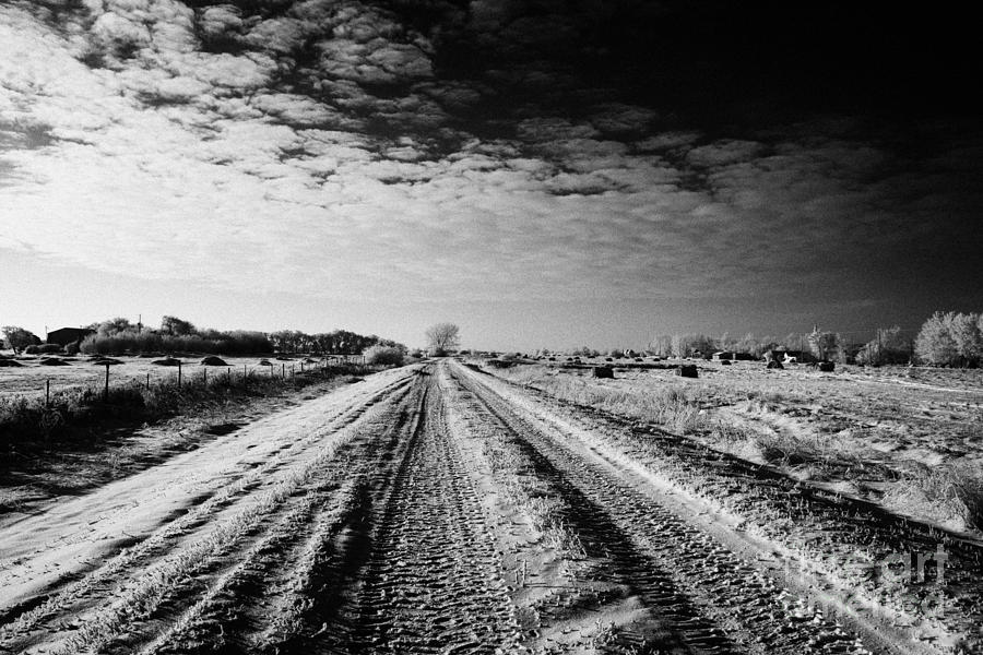 snow covered untreated rural small road in Forget Saskatchewan Canada Photograph