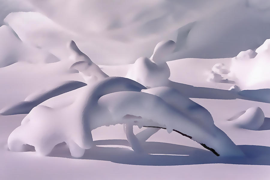 Abstract Photograph - Snow Drift Fantasy by Terril Heilman