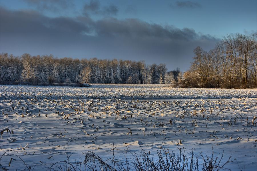 Snow On The Fields Photograph