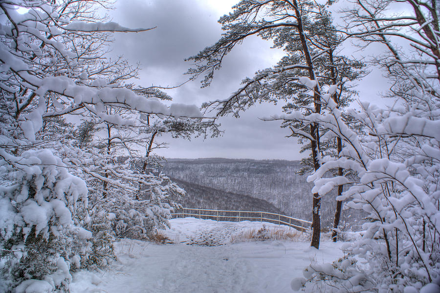 Snow Scenery is a photograph by Douglas Barnett which was uploaded on ...