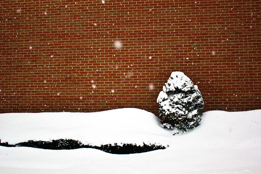 Snow Wall Photograph