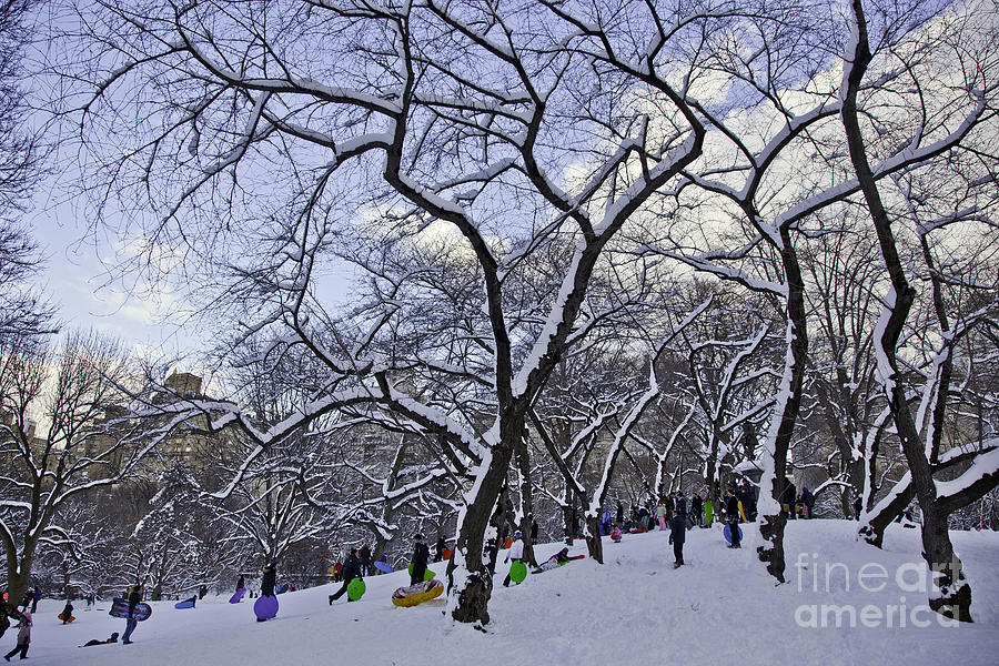 Snowboarders In Central Park Photograph