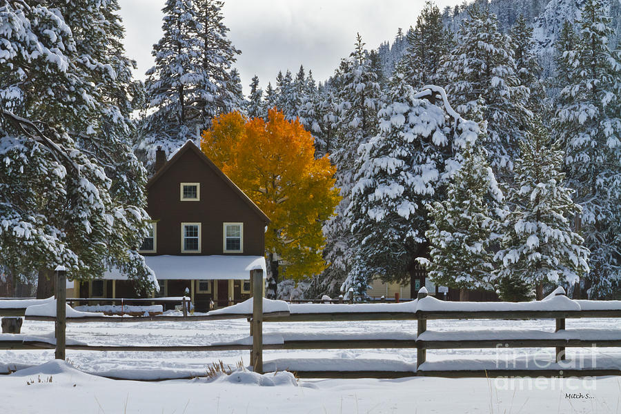 Snowed In At The Ranch Photograph